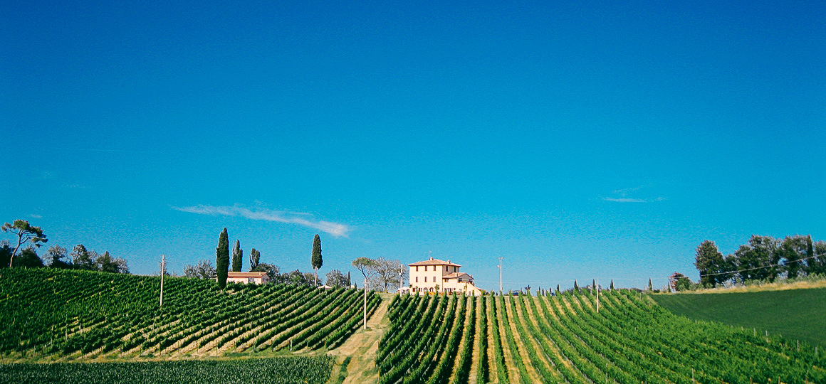 Agriturismo Toscana Chiusi Siena Image 4