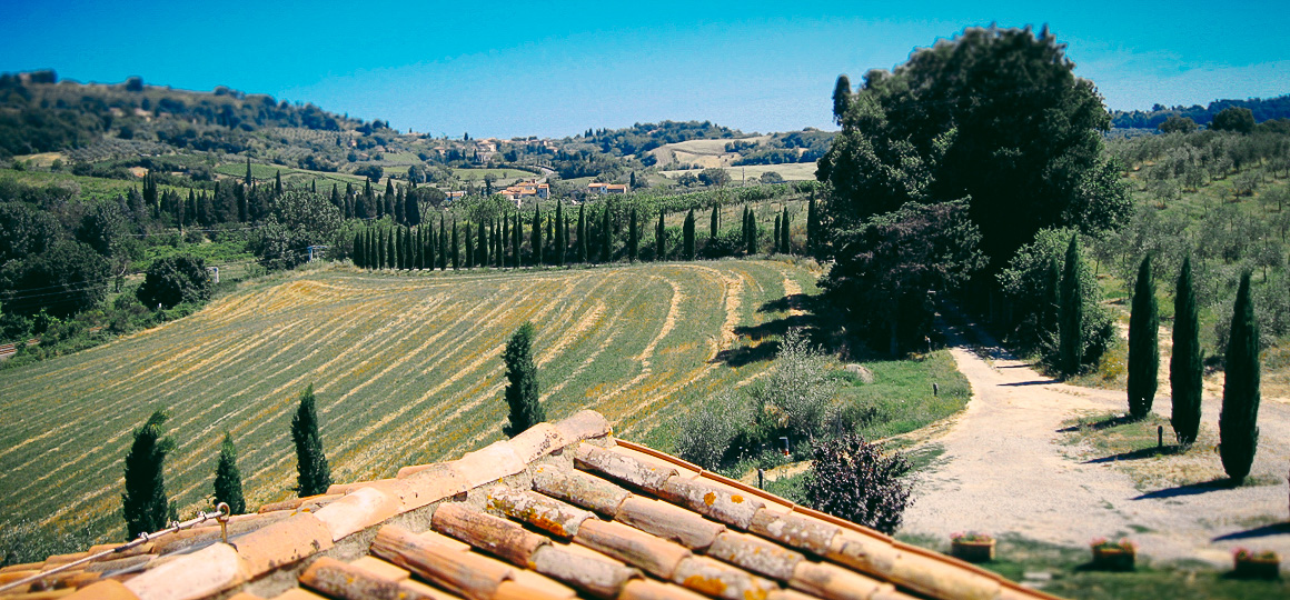 Agriturismo Toscana Chiusi Siena Image 5