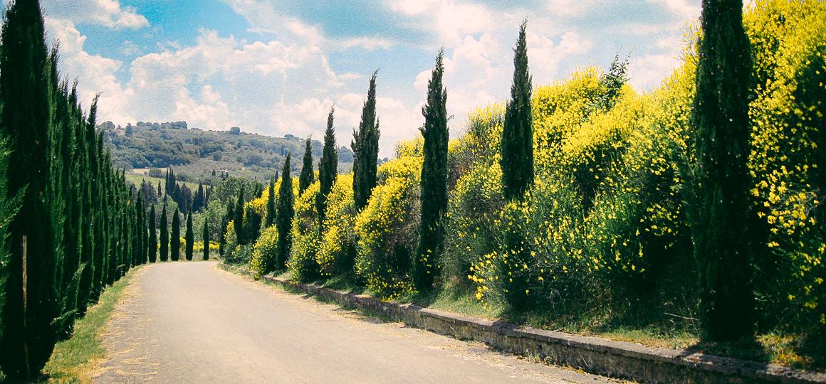 Agriturismo Toscana Chiusi Siena Image 10